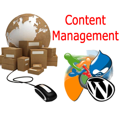 content management system services